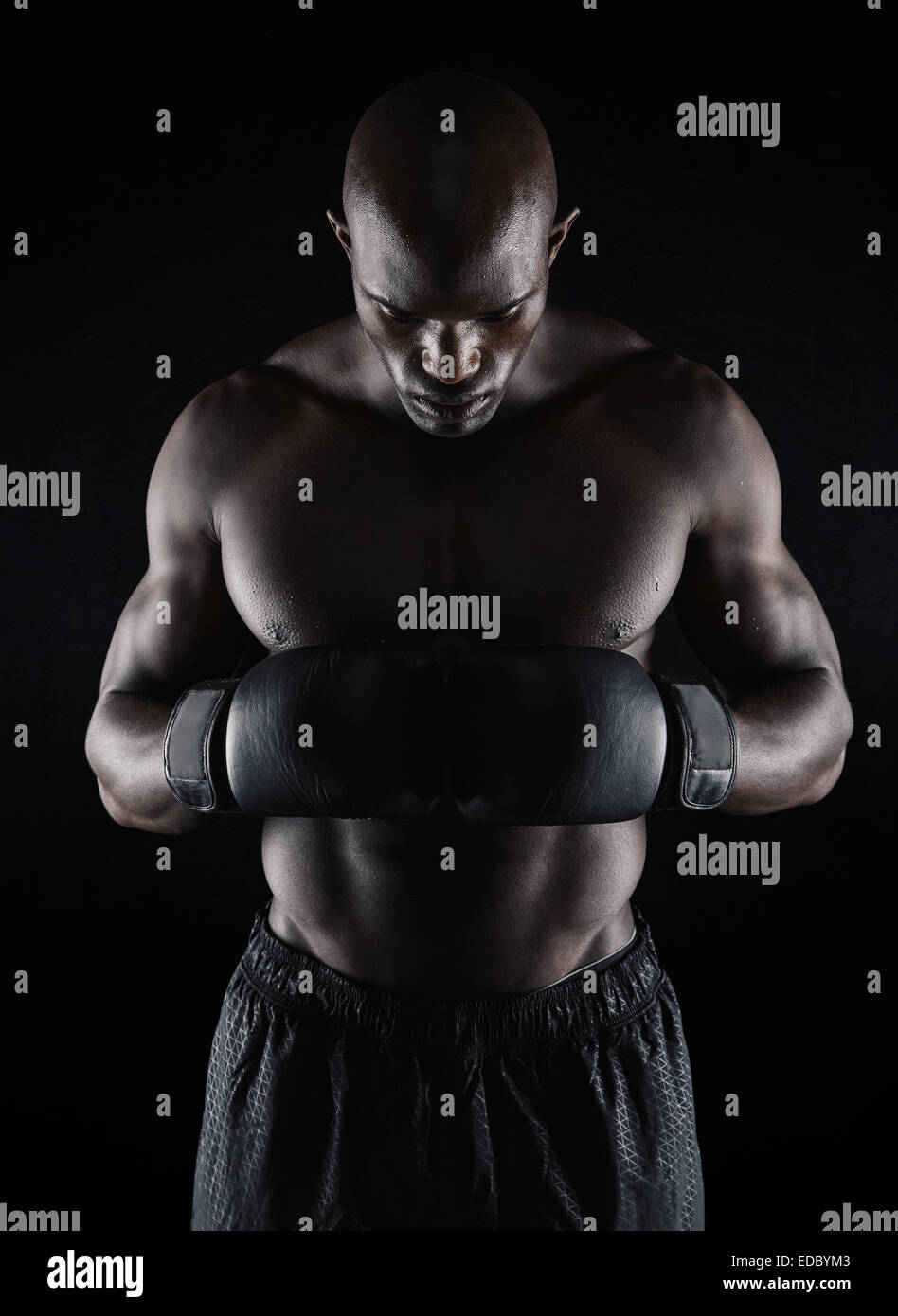 Portrait of fit young man wearing boxing gloves looking down on black background. Boxer preparing for fight. - Stock Image