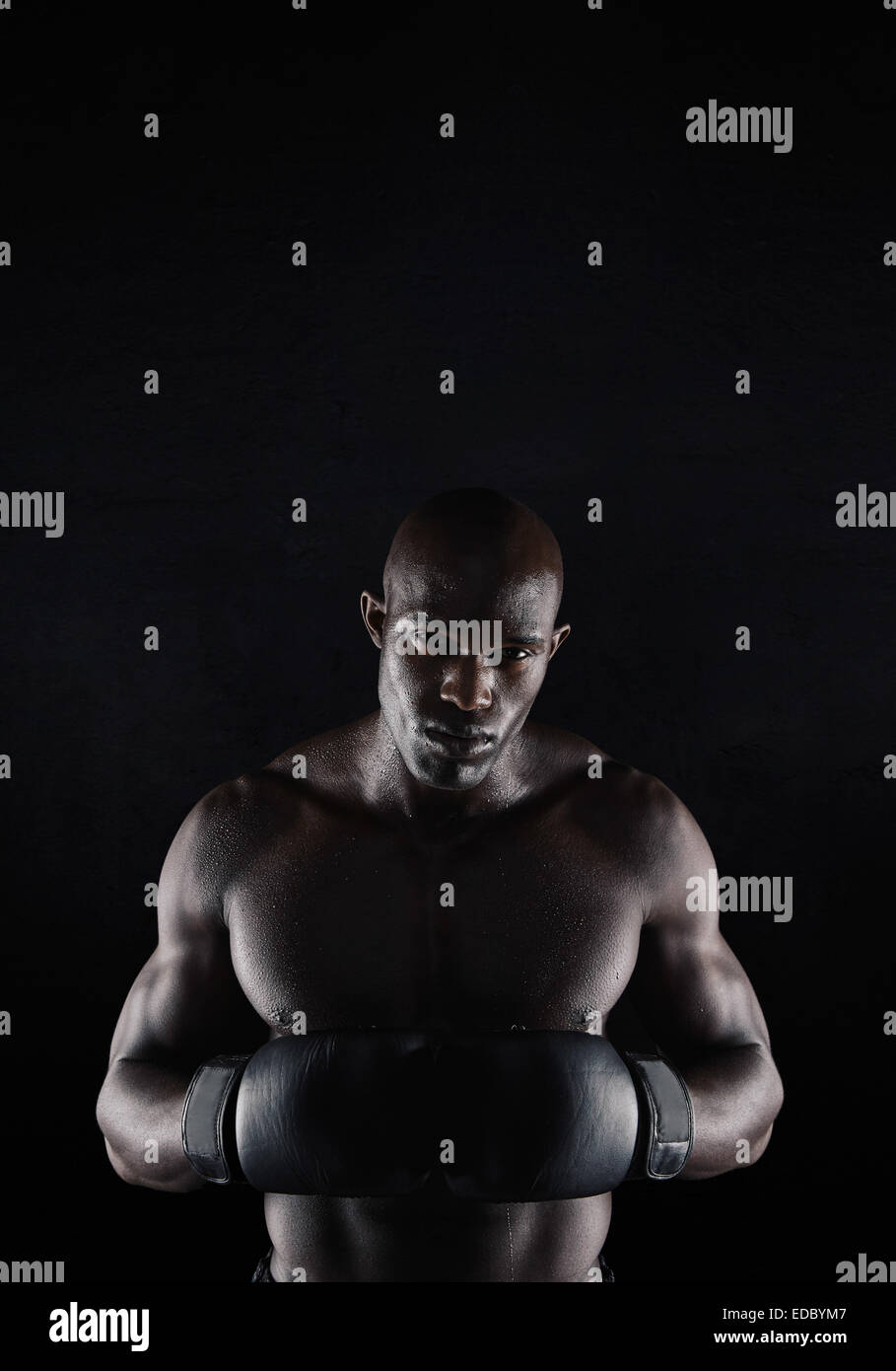 Portrait of professional male boxer against black background. Strong and muscular young man in boxing gear. - Stock Image