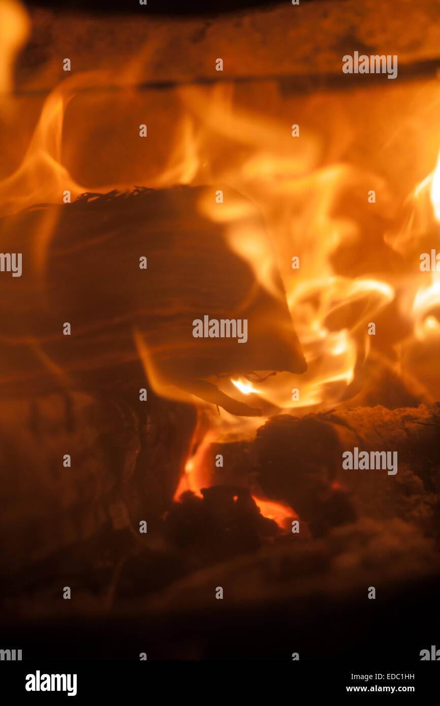 log fire,stove, wood, burner, fire, place, burning, log, iron, old, cast, lit, hearth, glass, roaring, fuel, wood - Stock Image