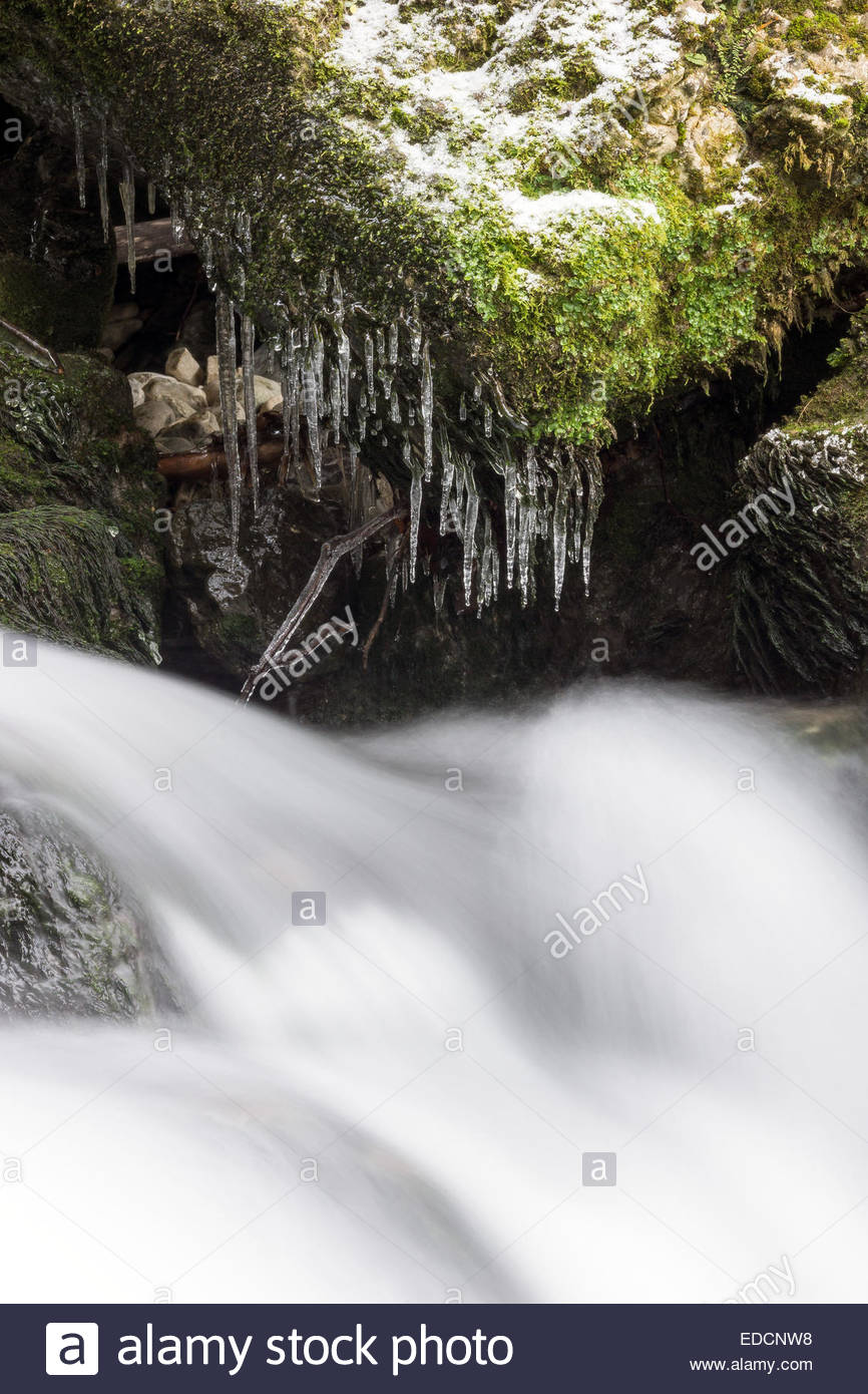 Whitewater running under icicles - Stock Image