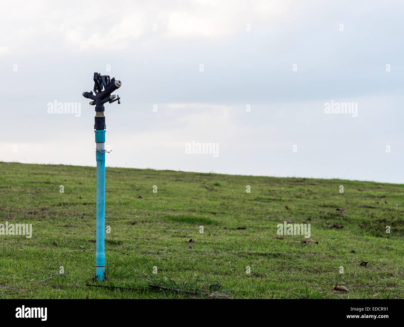Automatic sprinkle in the lawn of farmland. - Stock Image