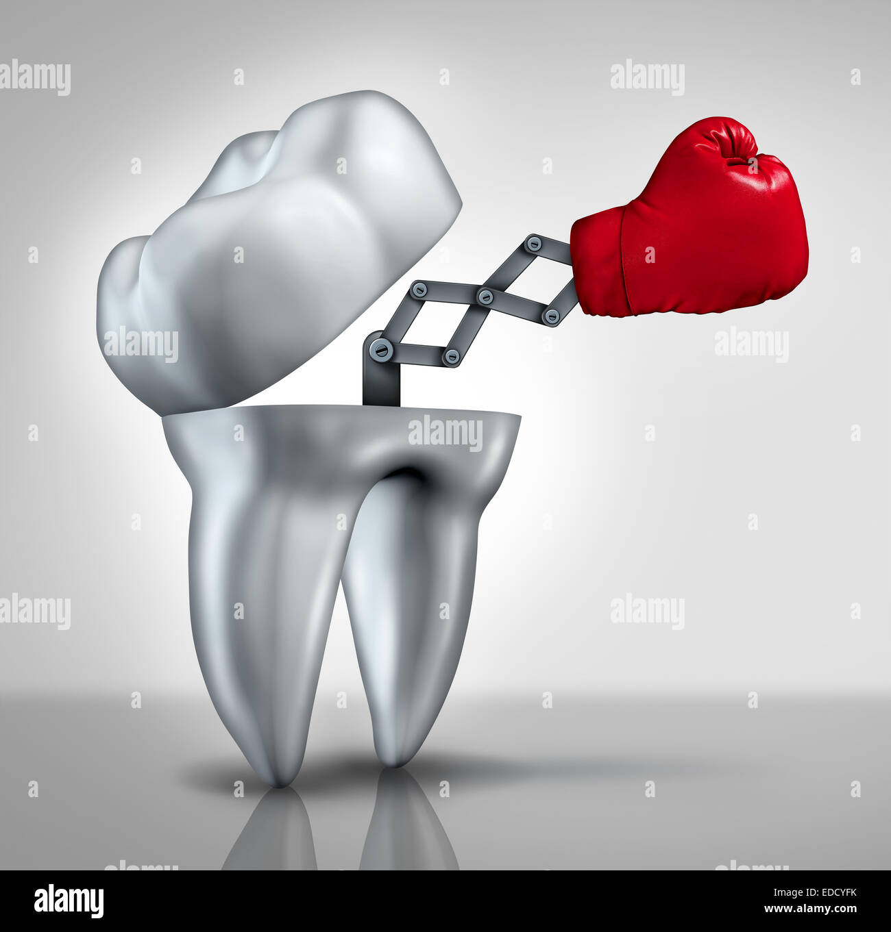 Fighting cavities and dental health care concept as an open molar tooth with a red boxing glove emerging to fight - Stock Image