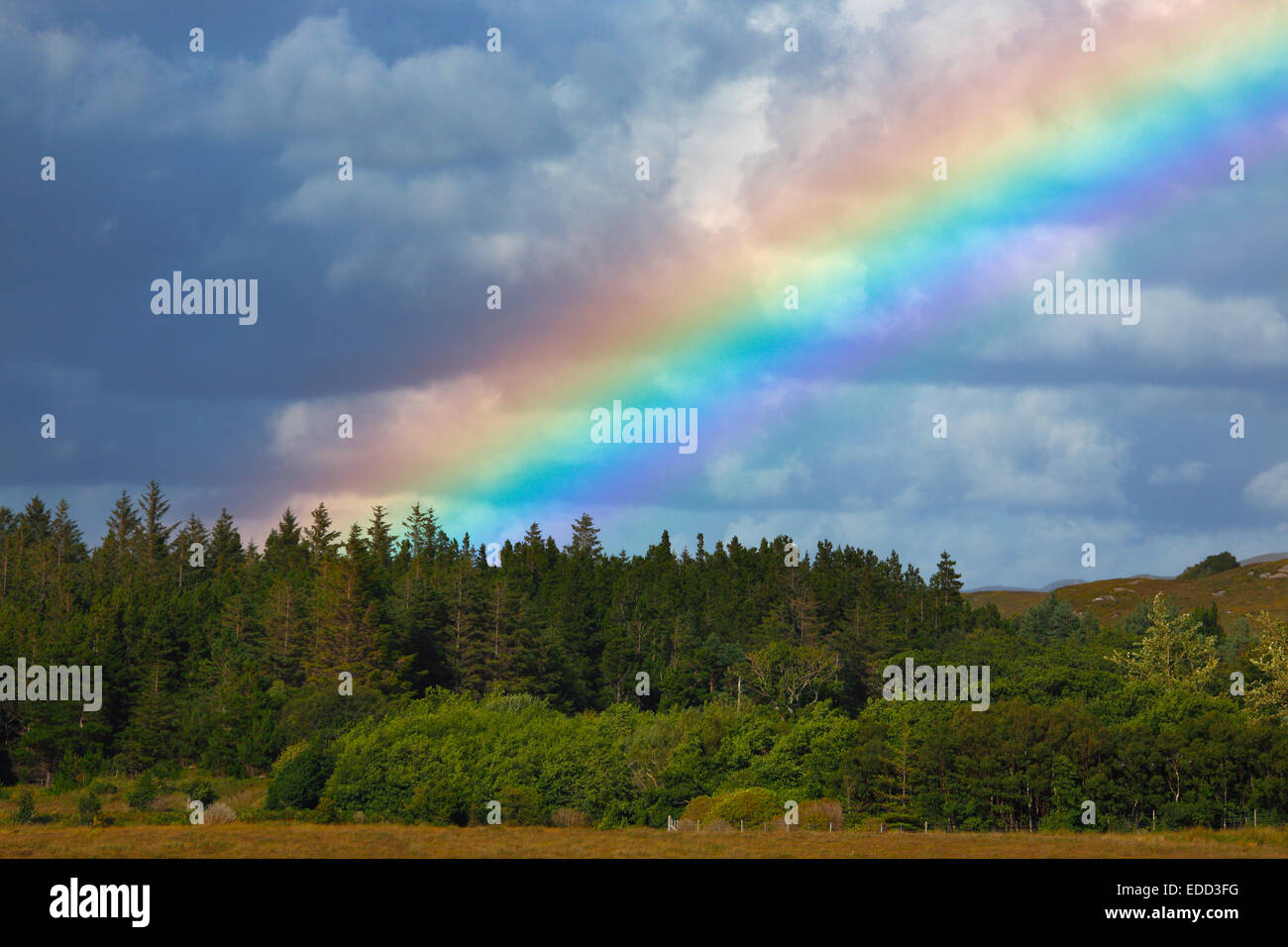 rainbow over the forest in the Glenveagh National Park, Donegal, Ireland - Stock Image