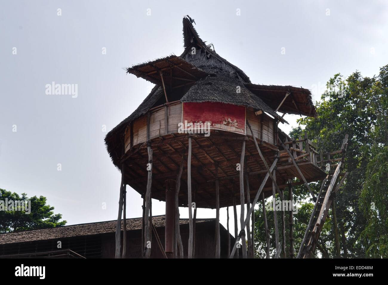 Traditional house on West Kalimantan, Indonesia - Stock Image