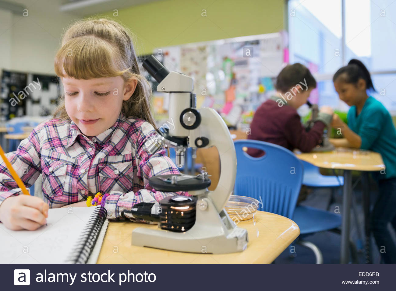 Elementary student writing next to microscope in laboratory - Stock Image