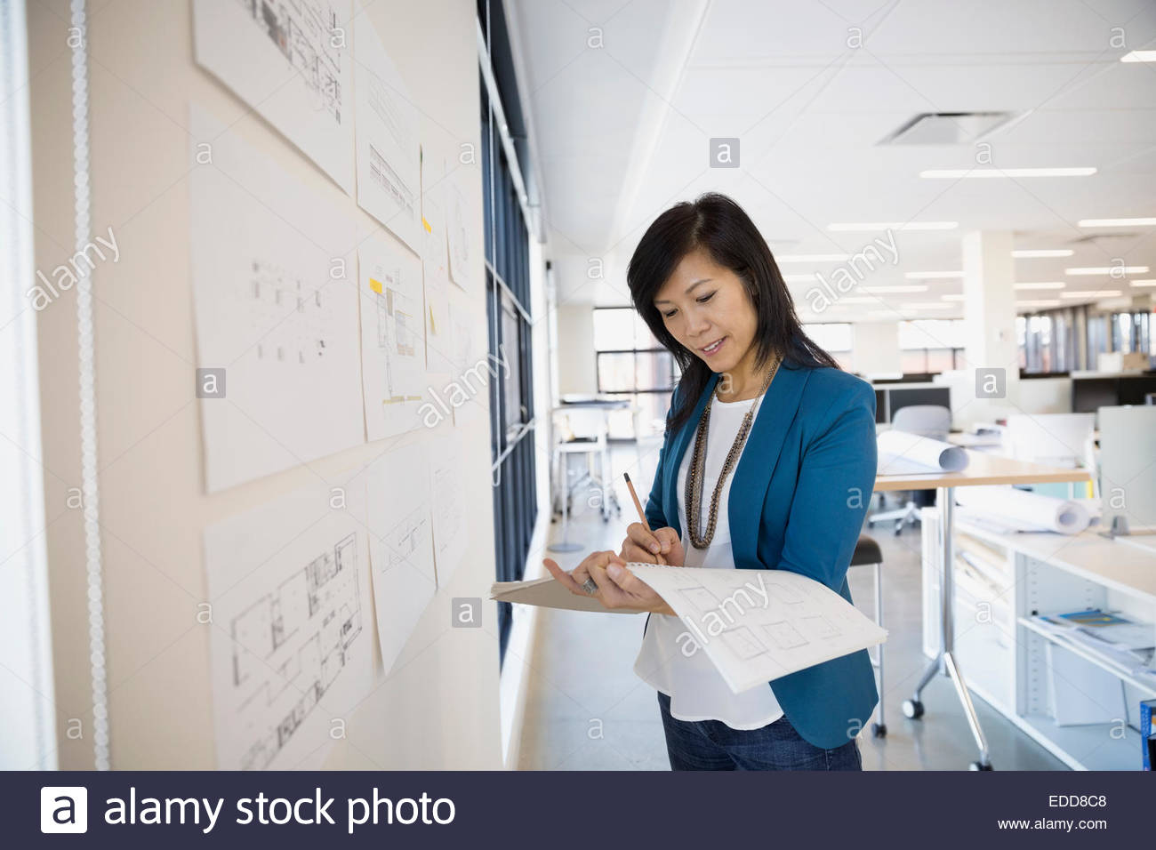 Architect drafting plans at wall - Stock Image