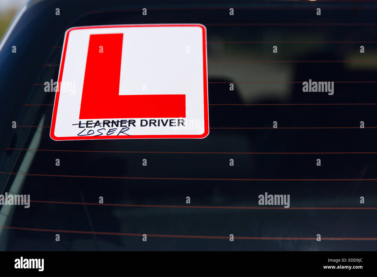 learner driver sign scratched out replaced with loser driver on the back of car windscreen - Stock Image