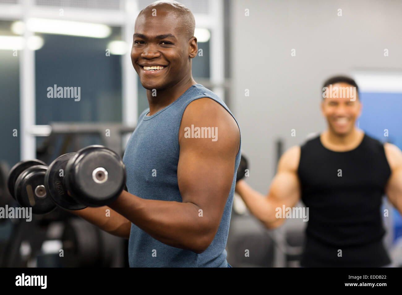 healthy African man working out with dumbbells in gym - Stock Image