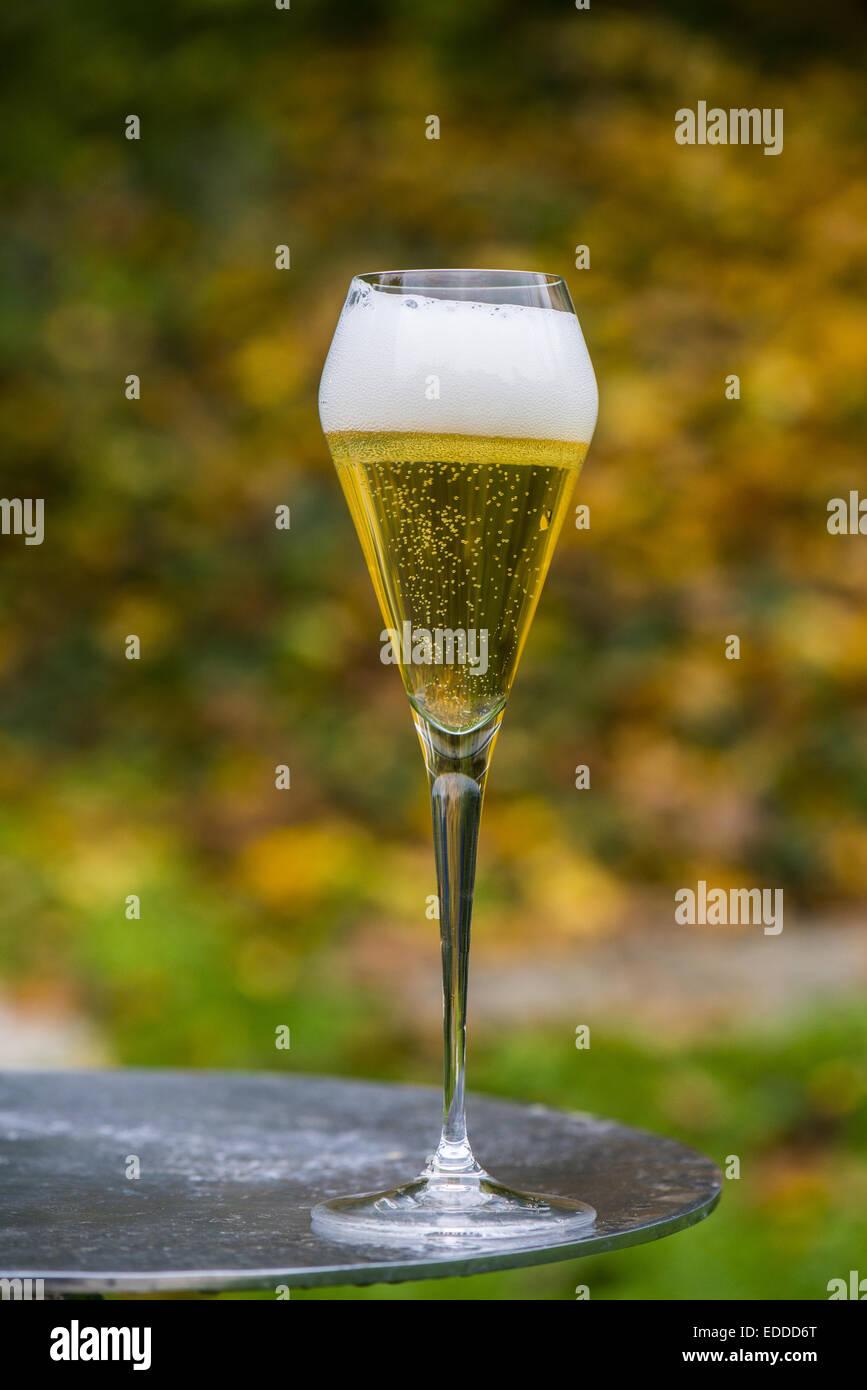 Sparkling wine, Austria - Stock Image