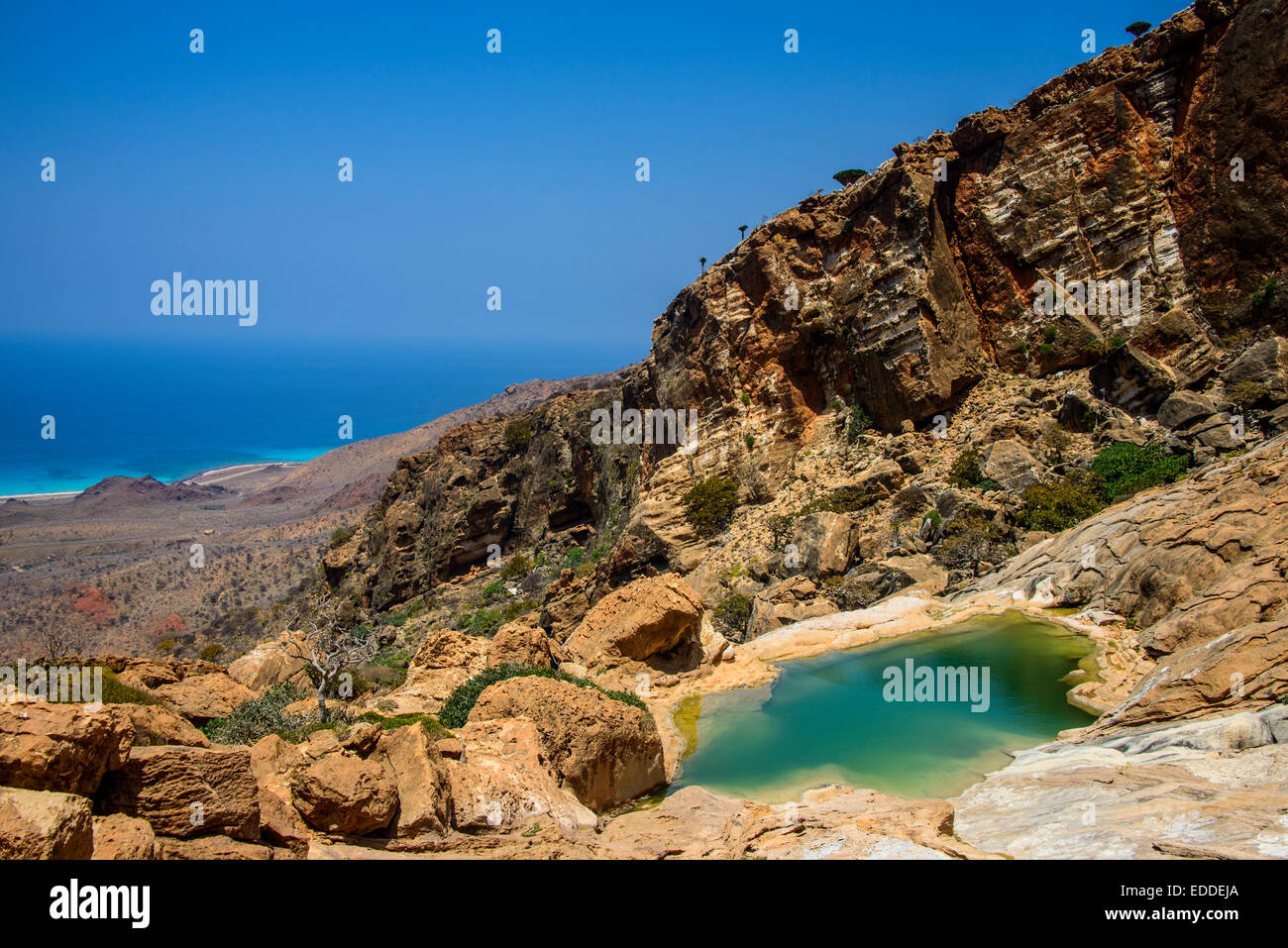 Pond at the coast, Homhil protected area, island of Socotra, Yemen - Stock Image