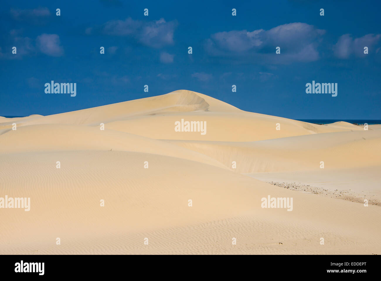 Sand dunes, island of Socotra, Yemen - Stock Image