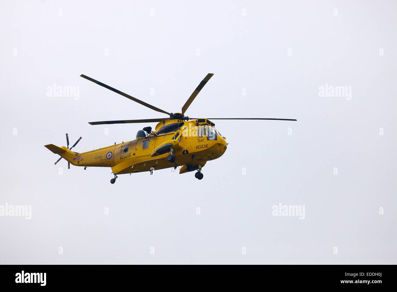 Royal Air Force search and rescue Westland Sea King helicopter. - Stock Image