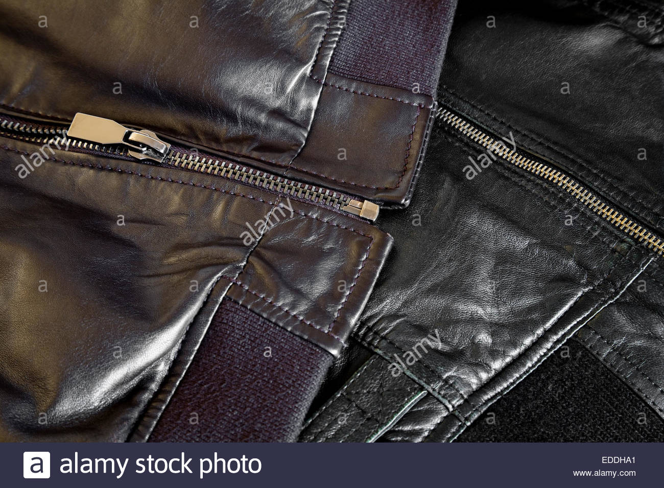 Stitching and zippers in leather jackets - Stock Image