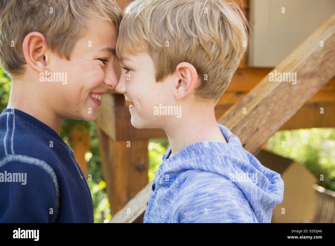 Two brothers playing in a garden, standing in front of a tree house. - Stock Image