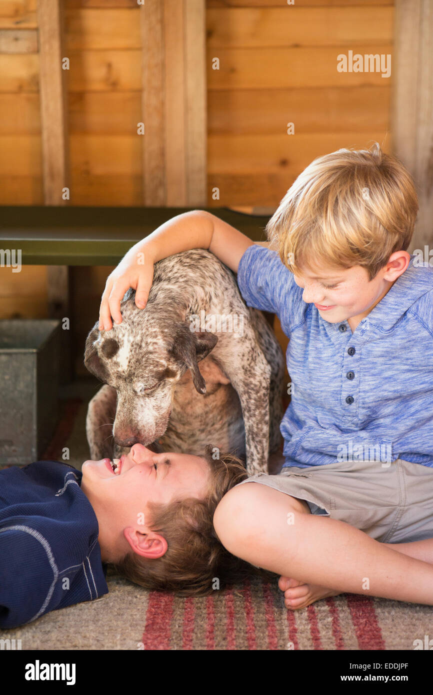 Two brothers playing with their dog. Stock Photo