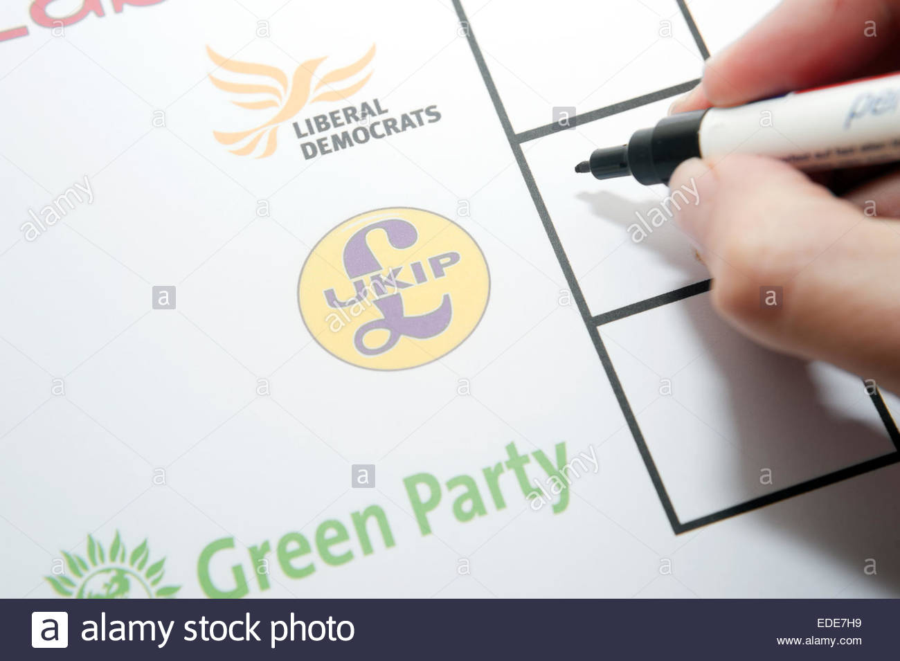 UK Elections ballot paper facsimile. Voting for UKIP. - Stock Image