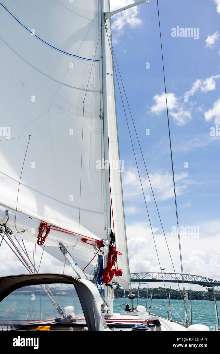 Sailing in Auckland Harbour - Stock Image
