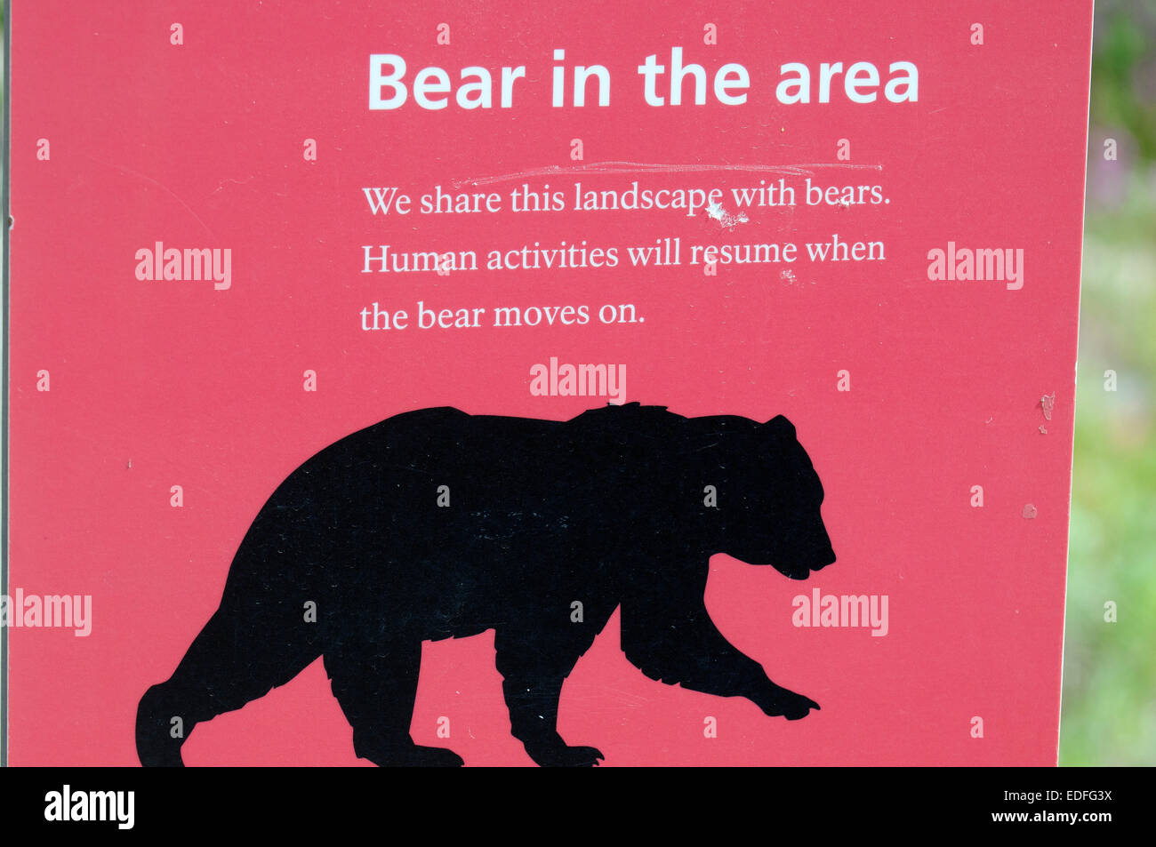 NEW METAL SIGN  ALASKA GRIZZLY  BEAR WARNING   DENALI PARK