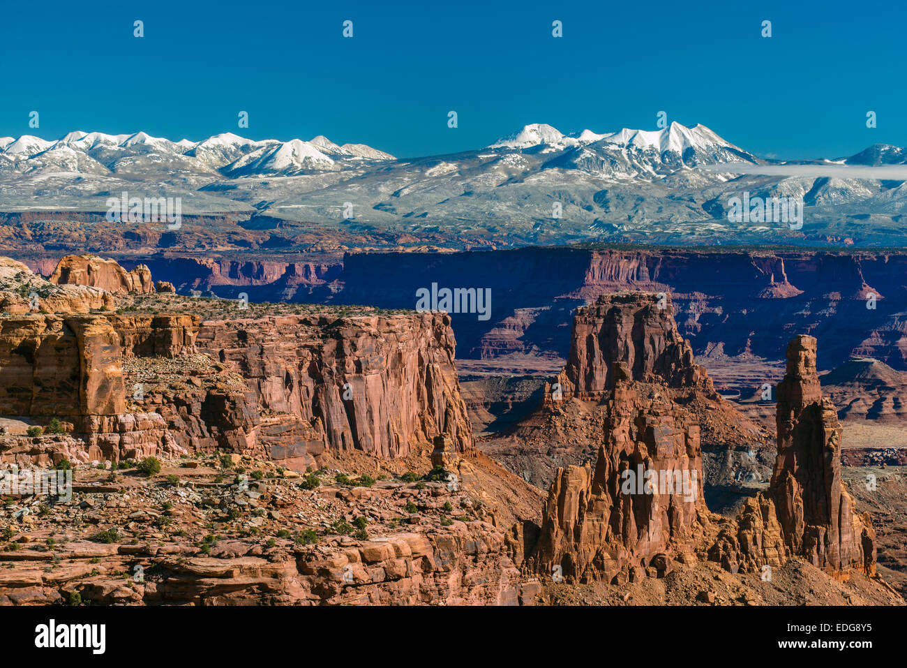 Winter top view from Island in the Sky with La Sal snowy mountains in background, Canyonlands National Park, Utah, - Stock Image