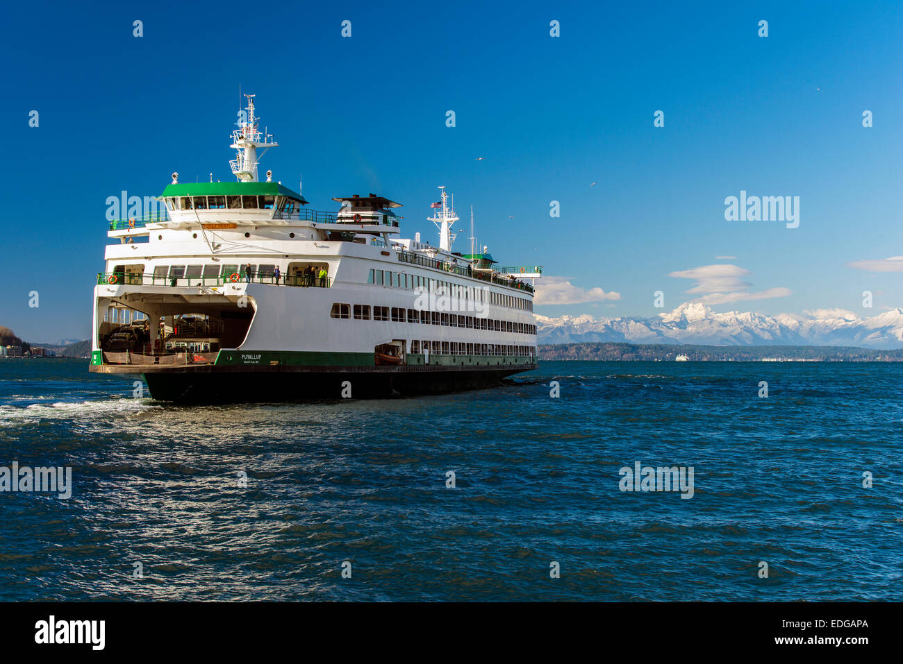 Washington State Ferry with snowy mountains of Olympic Peninsula in the background, Seattle, Washington, USA - Stock Image