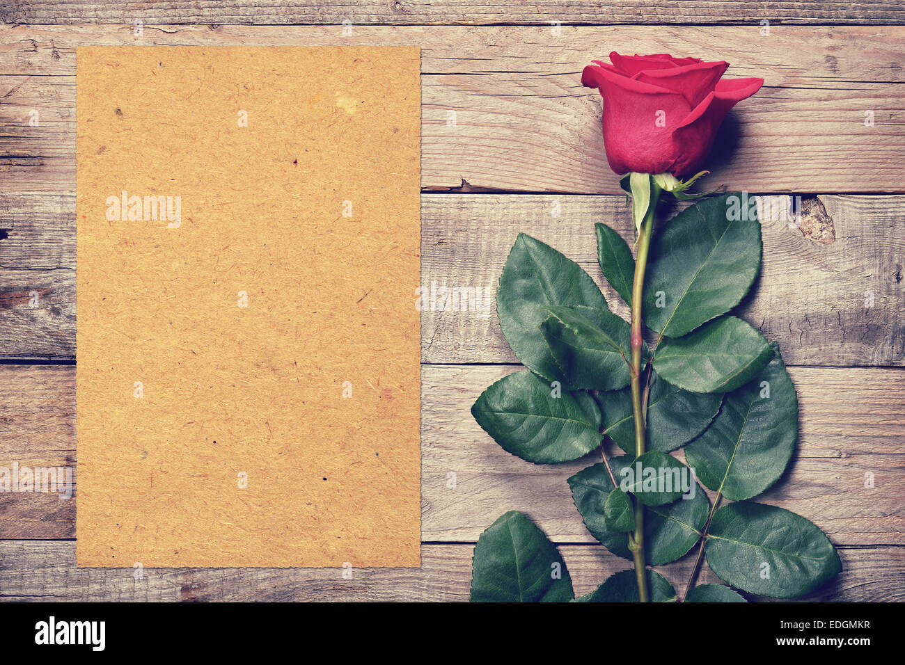 Vintage rose and blank paper on old wooden background - Stock Image