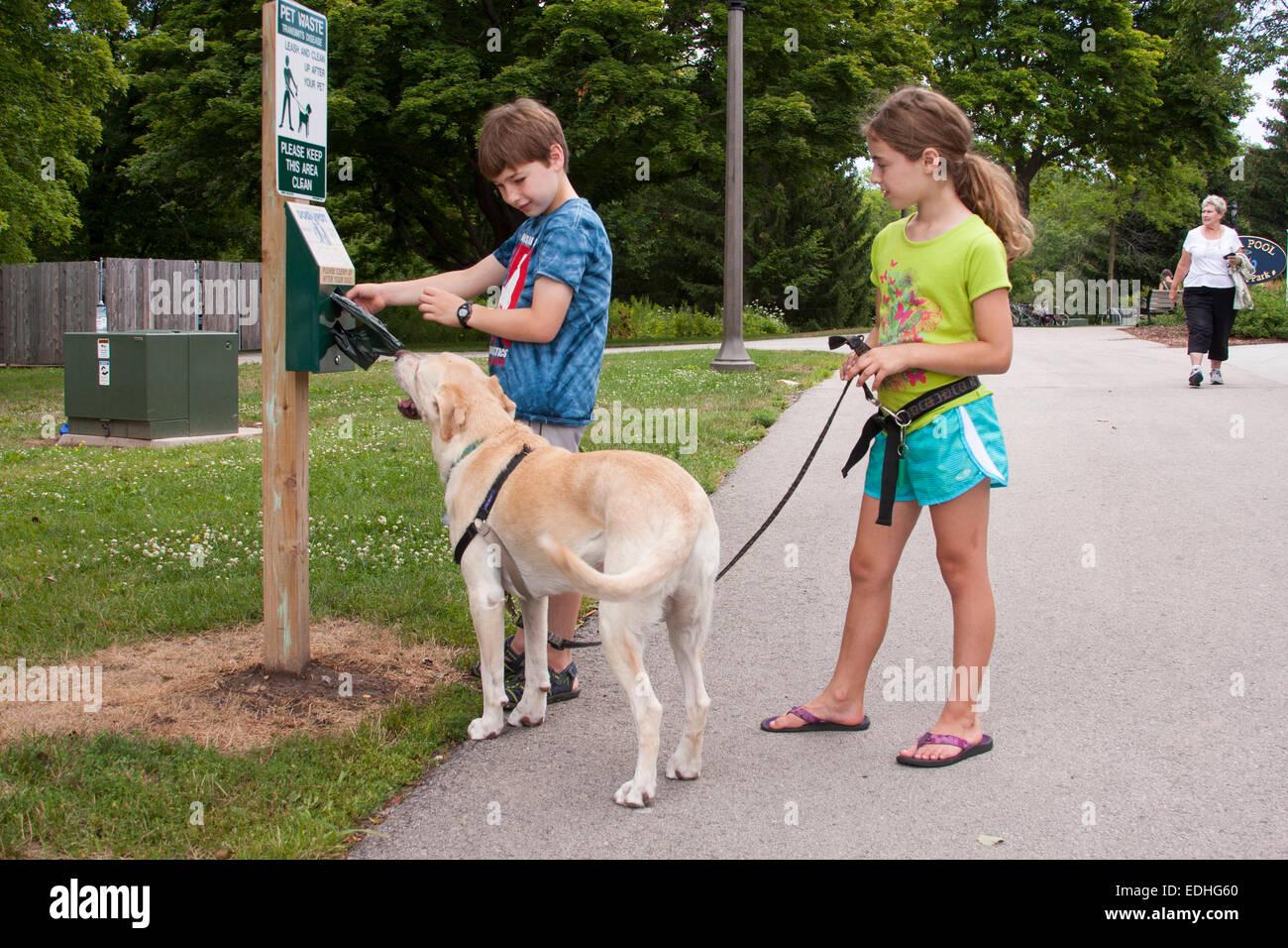 Dog Poop While Walking