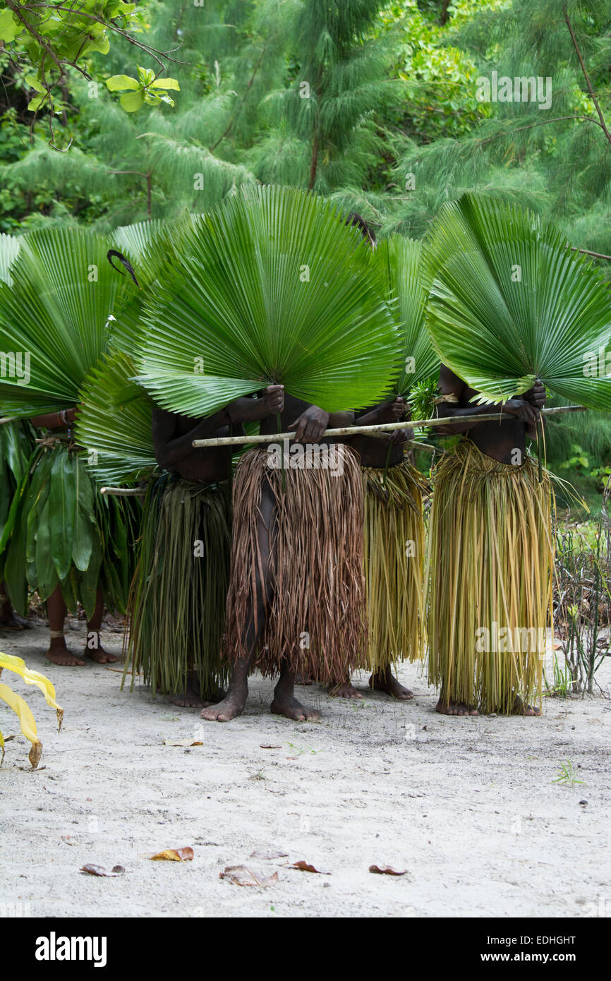 Republic of Vanuatu, Torres Islands, Loh Island. Ceremonial dancers in costume. Villagers in grass skirts with large - Stock Image