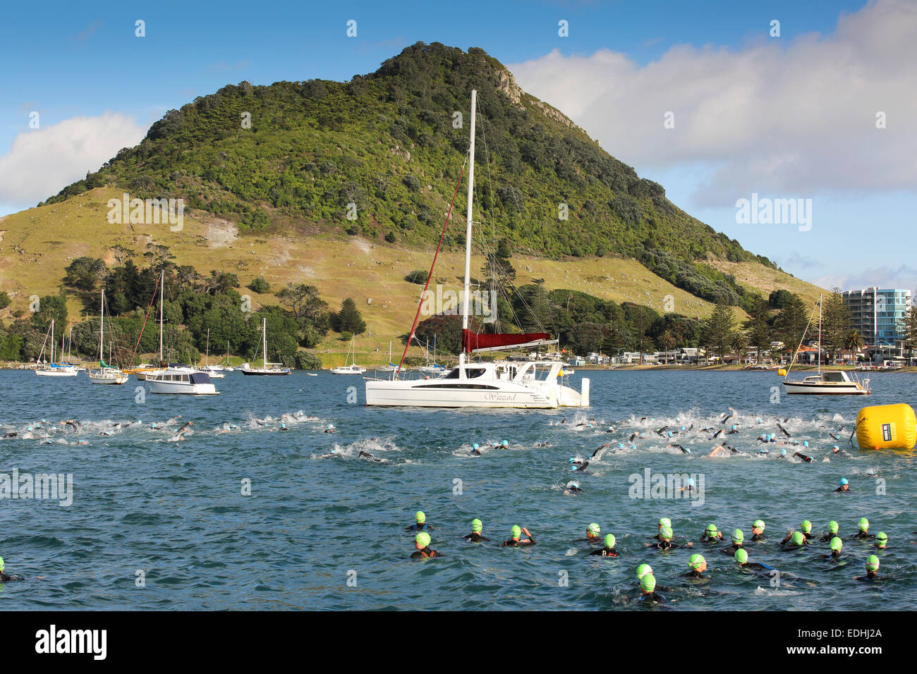 Swimmers in triathlon race at Mount Maunganui, New Zealand - Stock Image