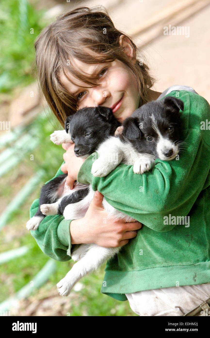 Friendship a portrait of a girl with puppy border collie - Stock Image