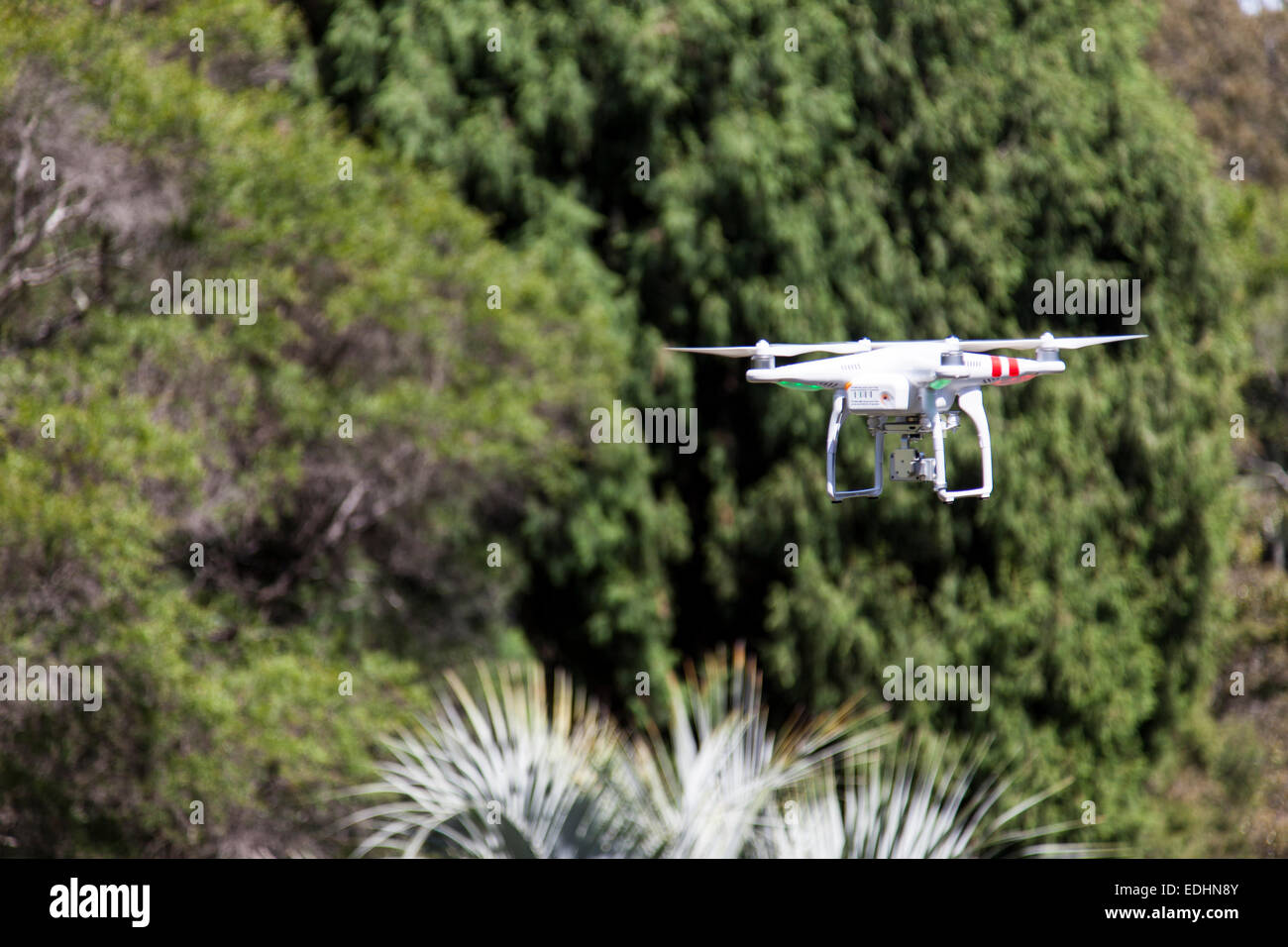Drone camera hovering in a park in Australia - Stock Image