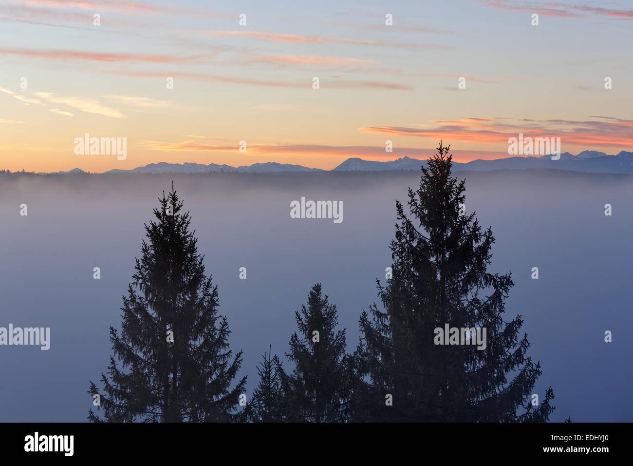 Morning atmosphere, Weiße Wand above Pupplinger Au, Icking, Upper Bavaria, Bavaria, Germany - Stock Image
