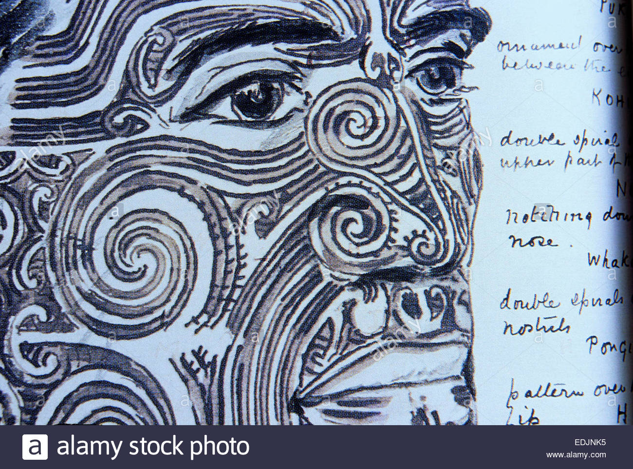 Maori warrior portrait, North Island, New Zealand. - Stock Image