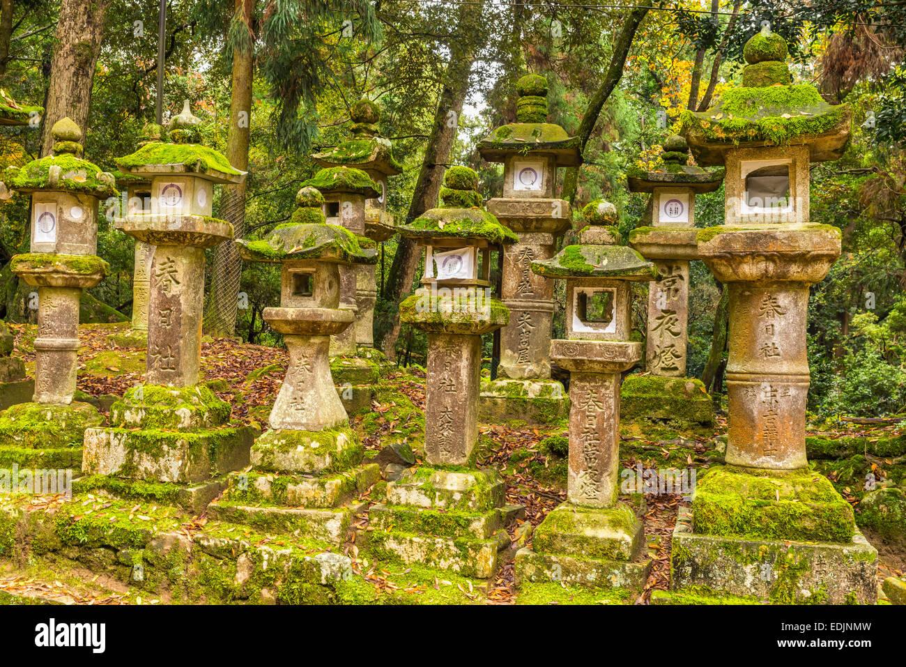 Stone Lantern at Kasuga Taisha in Nara, Japan - Stock Image