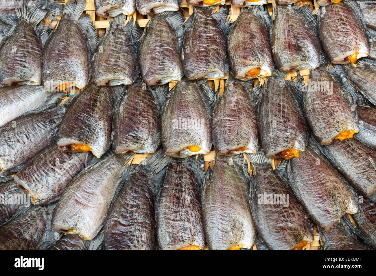 Fishes (Trichogaster pectoralis) arrange on rattan in market - Stock Image
