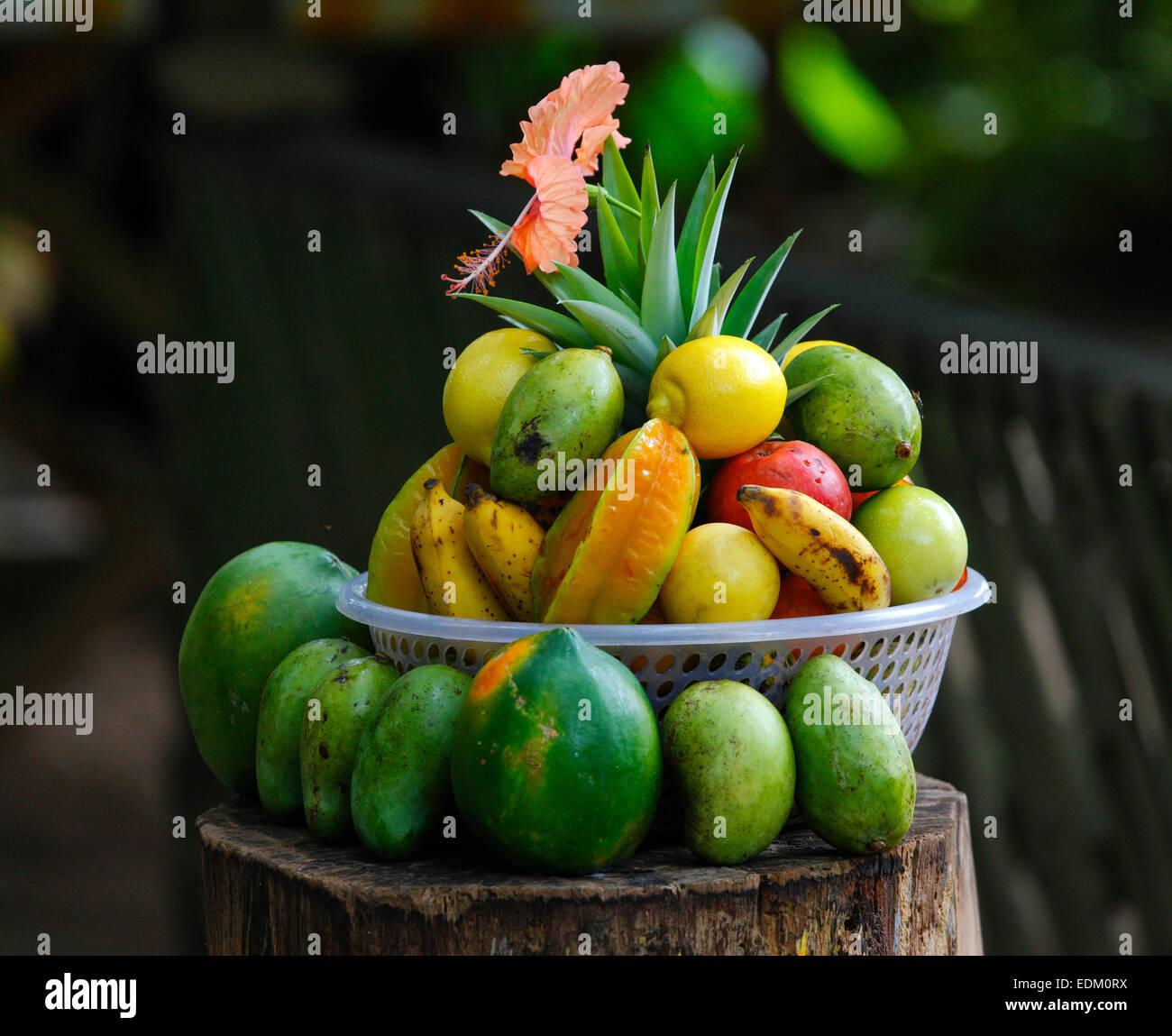 Seychelles tropical fruits, island, La Digue - Stock Image