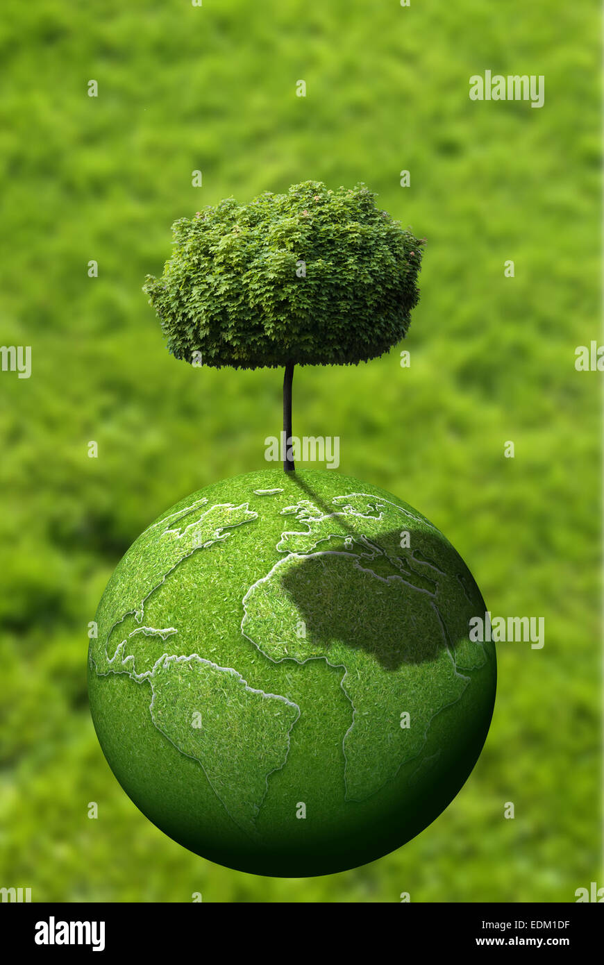 green tree on green planet Earth - Stock Image