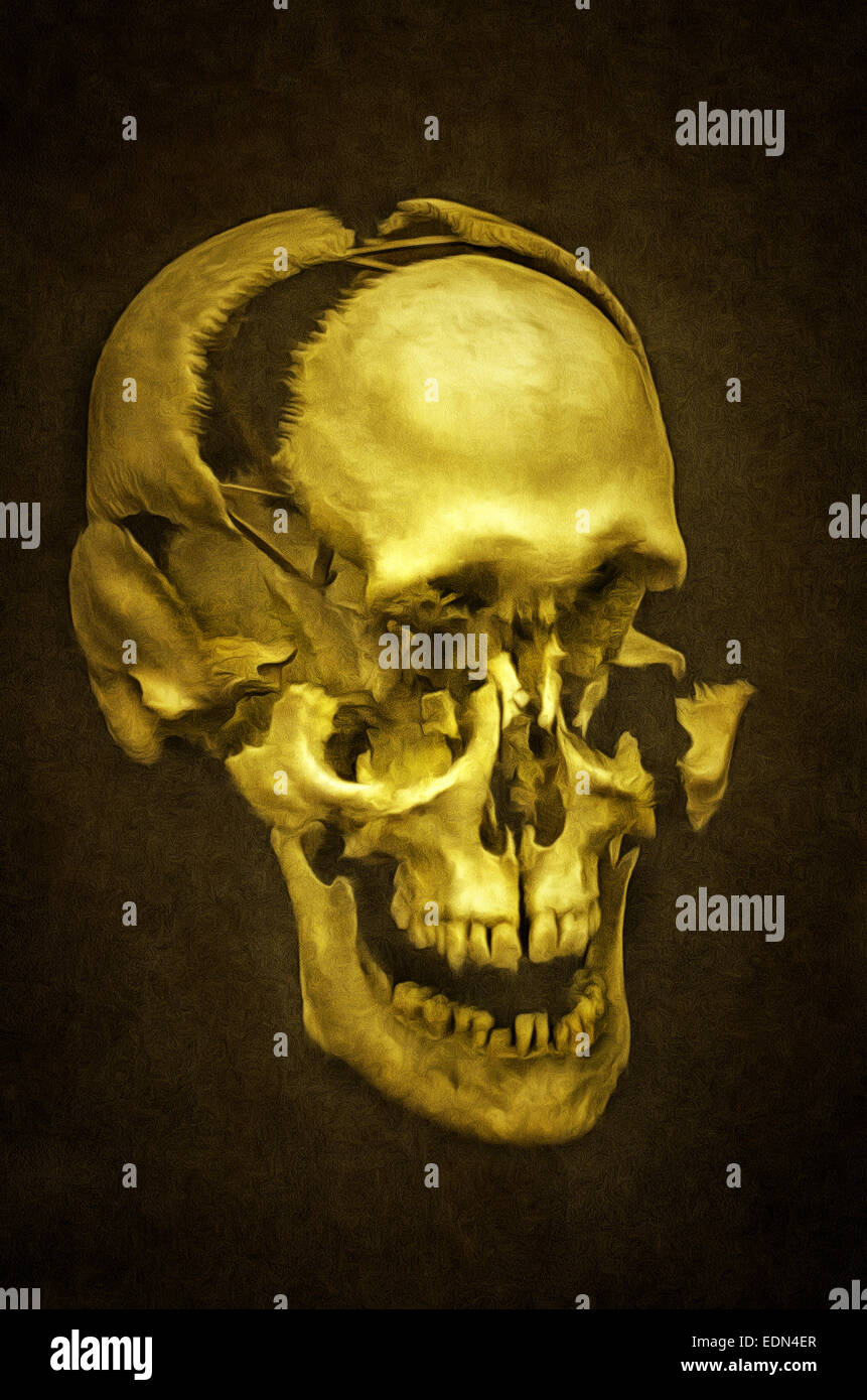 Illustration Of A Human Skull Skeleton Dead Head Painting Stock