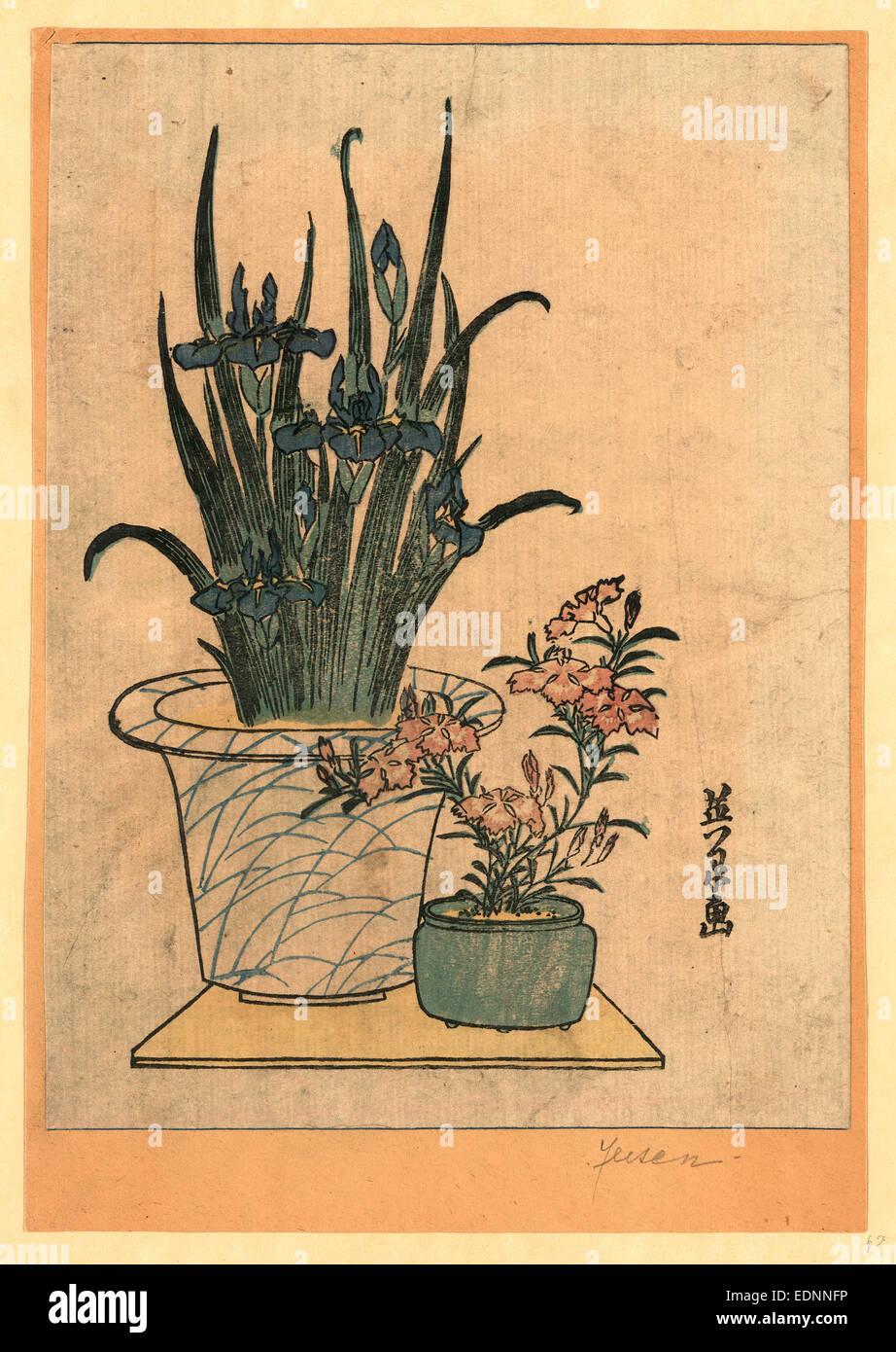 Hanashobu ni nadeshiko, Potted irises and pinks., Ikeda, Eisen, 1790-1848, artist, [between 1818 and 1844], 1 print - Stock Image