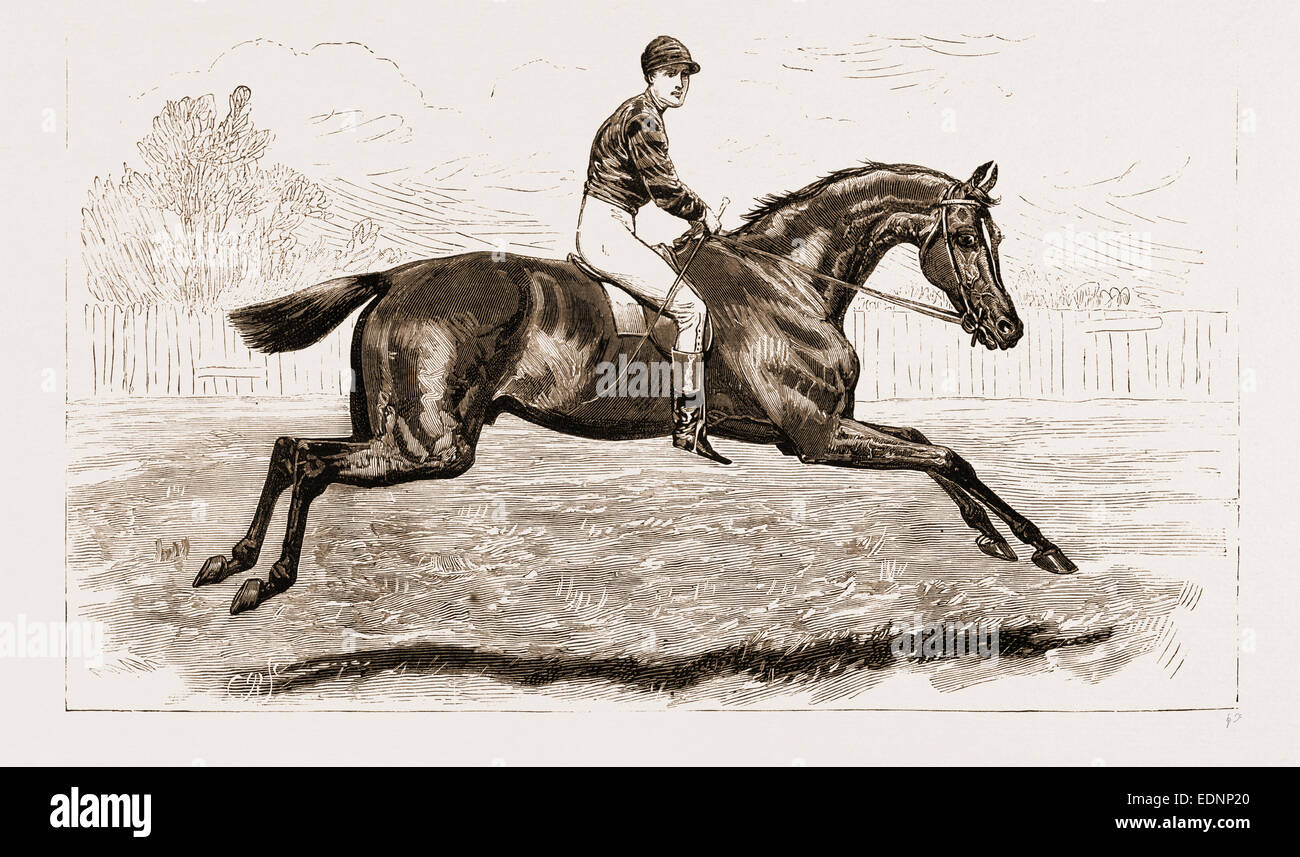IROQUOIS, THE WINNER OF THE DERBY OF 1881, AND HIS JOCKEY, FRED ARCHER - Stock Image