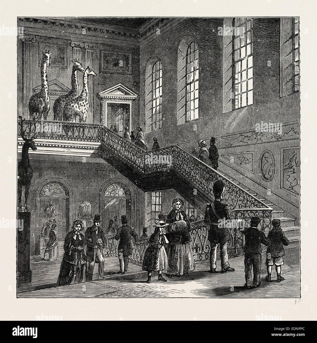 MONTAGU HOUSE, GRAND STAIRCASE, 1830. London, UK, 19th century engraving - Stock Image