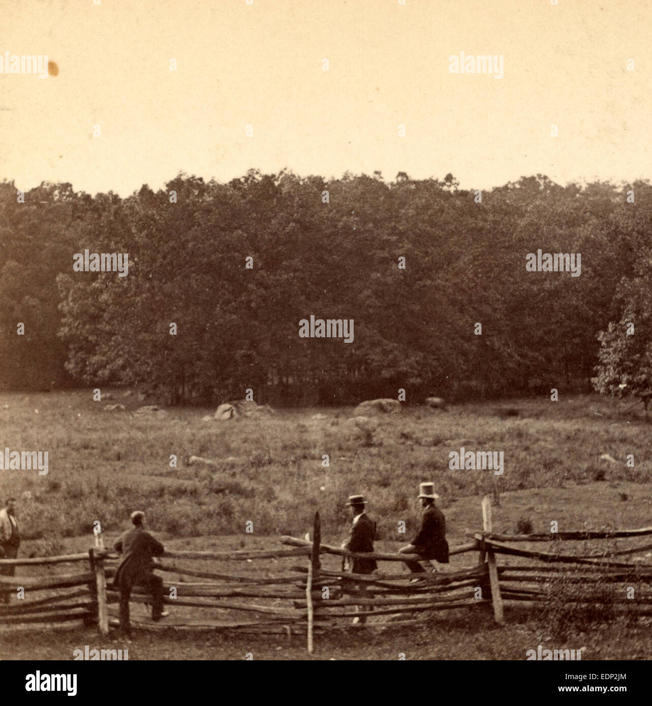 Meadow over which the 2d Mass. and 27th Indiana charged on morning of July 3d. Woods occupied by Confederates - Stock Image