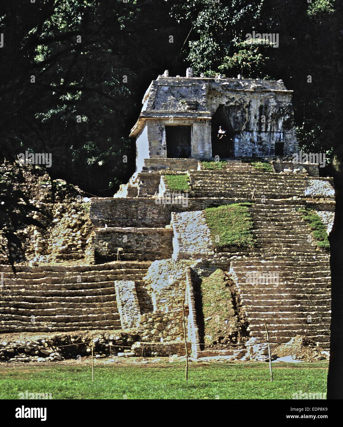 Mexico - Maya ruins at Palenque - one of the biggest and best archaeological sites in Mexico Temple XVII - Stock Image