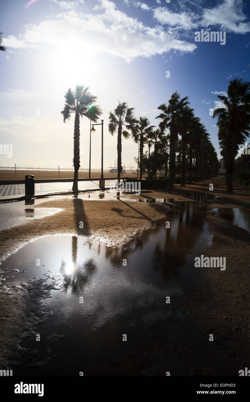Winter sun after rain reflects off large puddles on Valencia promenade Stock Photo