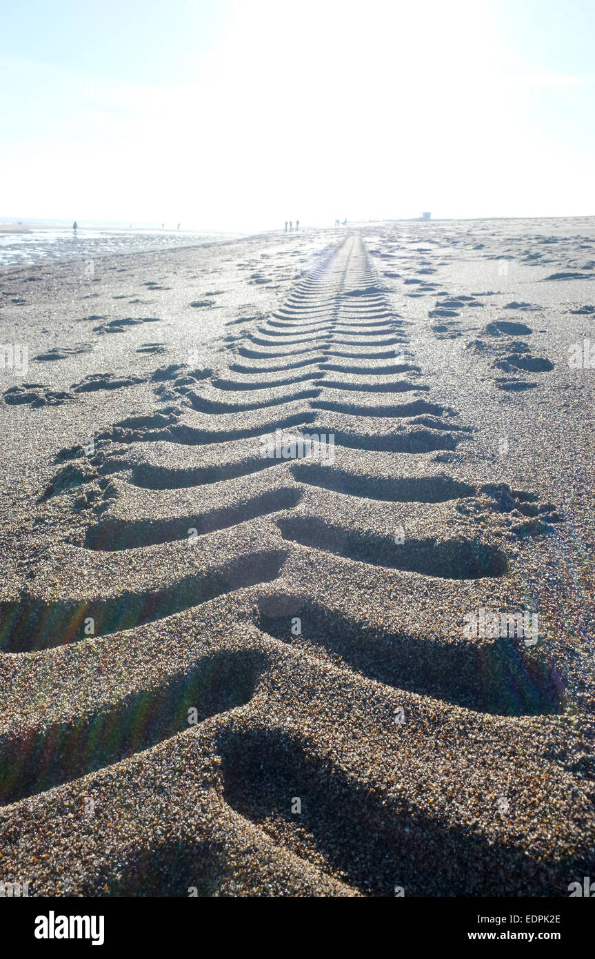 Tractor tyre tracks in the soft beach sand disappear into the low sun on the horizon - Stock Image