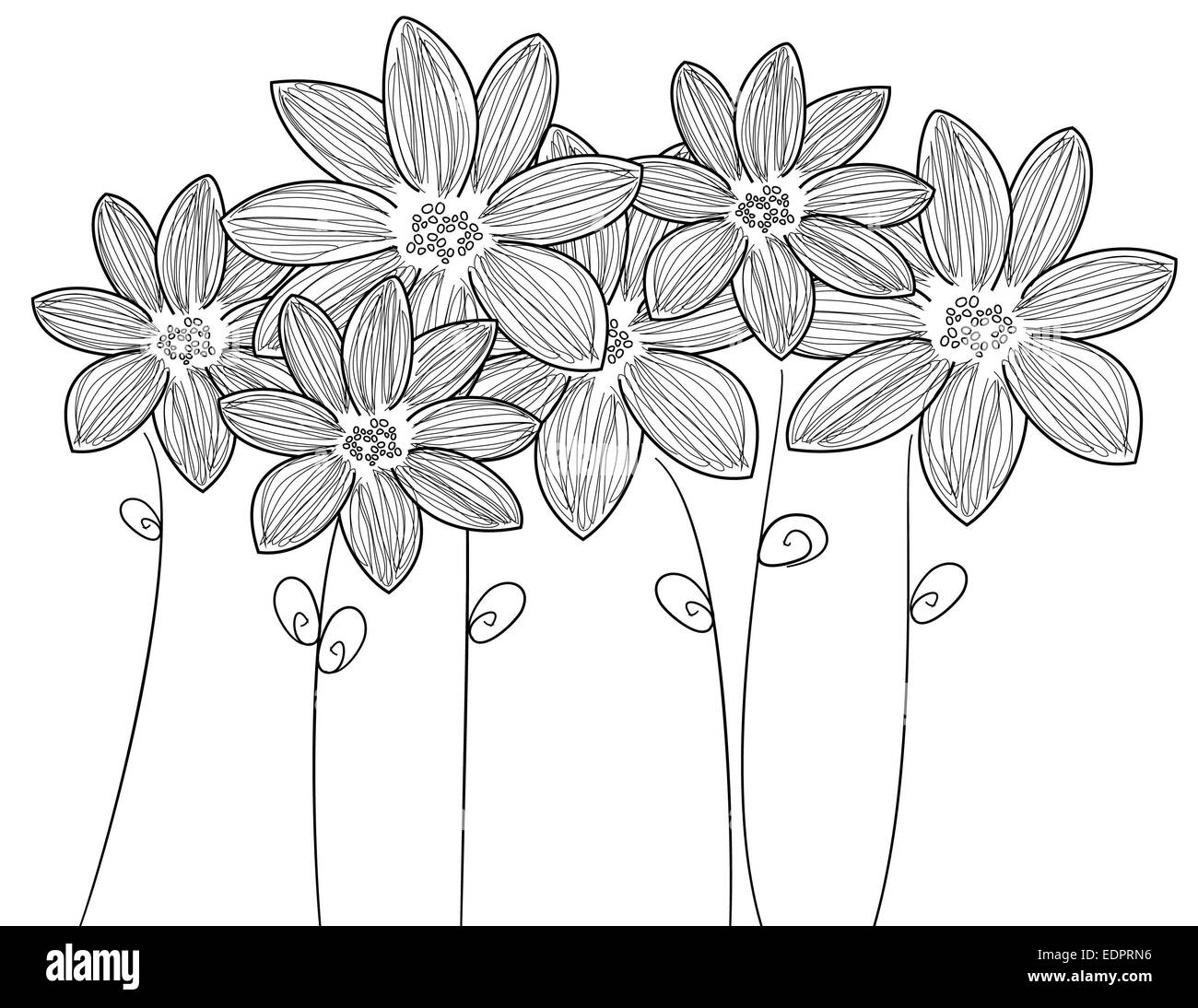 Delicate black & white illustration six fresh flowers with stems and leaves for decorative or romantic themes - Stock Image