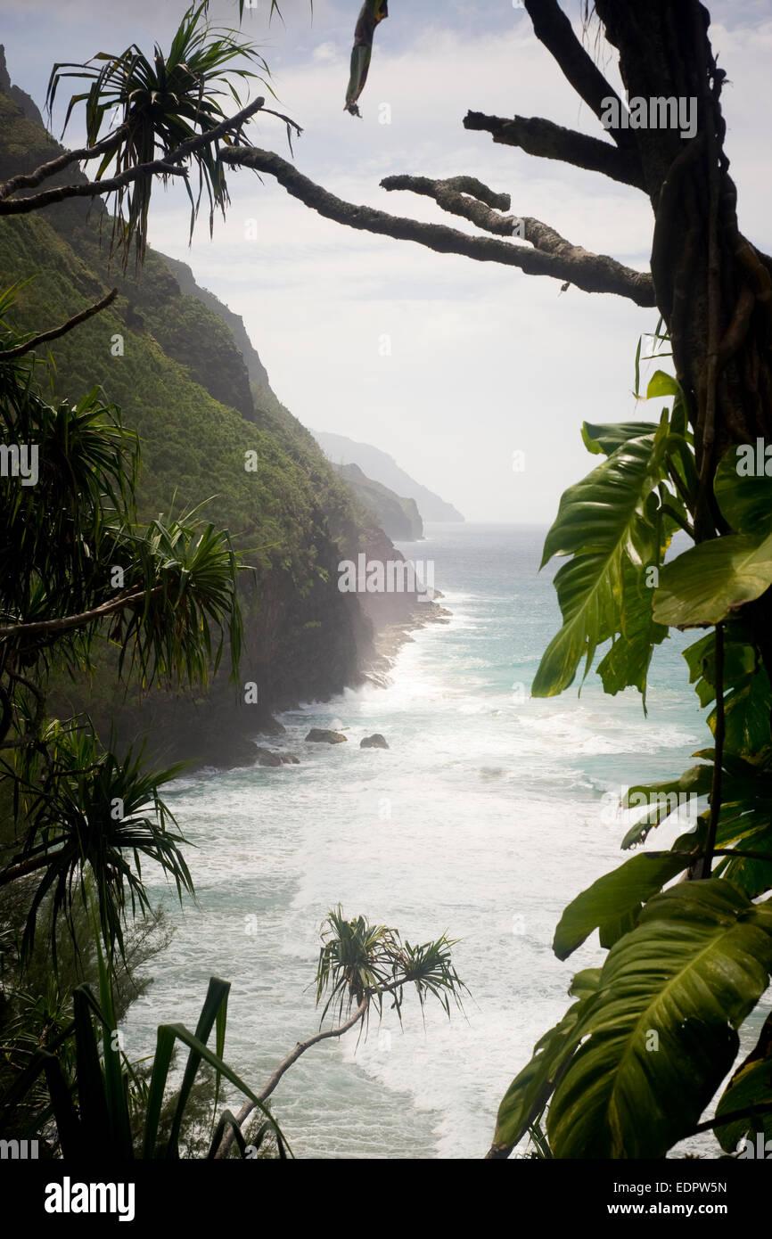 The Kalalau Trail treks along the high sea cliffs of the Na Pali Coast of Kauai. - Stock Image