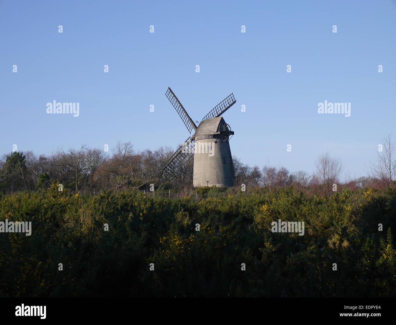 Bidston Hill WIndmill - Stock Image
