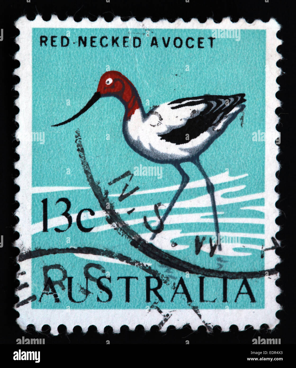Used and postmarked Australia / Austrailian Stamp Red Necked Avocet 13c - Stock Image