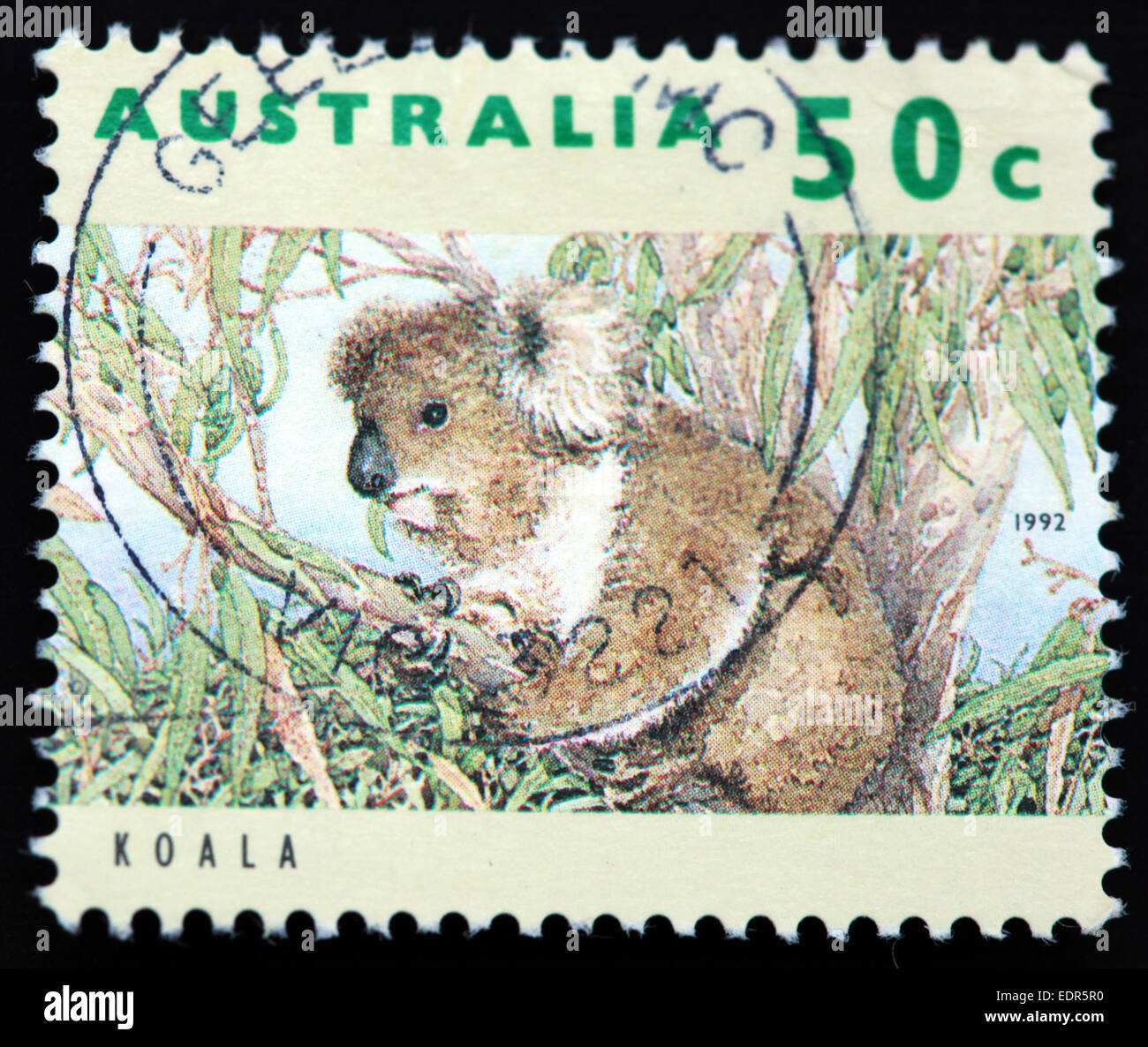 Used and postmarked Australia / Austrailian Stamp 50c Koala 1992 Stock Photo
