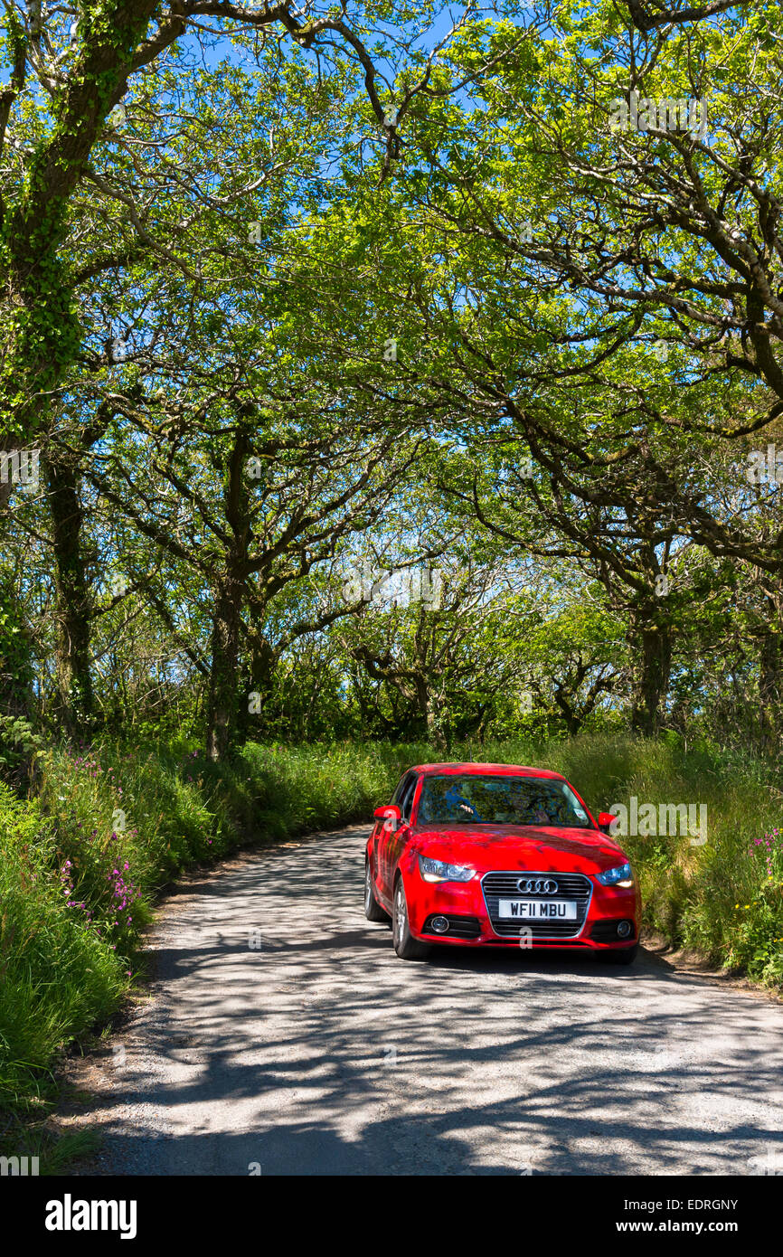 Driving a red German Audi saloon car along country lane at Hartland in North Devon, Southern England, UK - Stock Image
